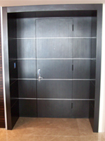 ENTRY DOOR REFACING & DAYORIS Doors | Modern Refacing Doors Contemporary Refacing Doors
