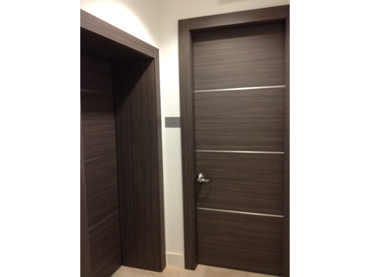 Dayoris Doors Modern Entry Door Miami South Florida