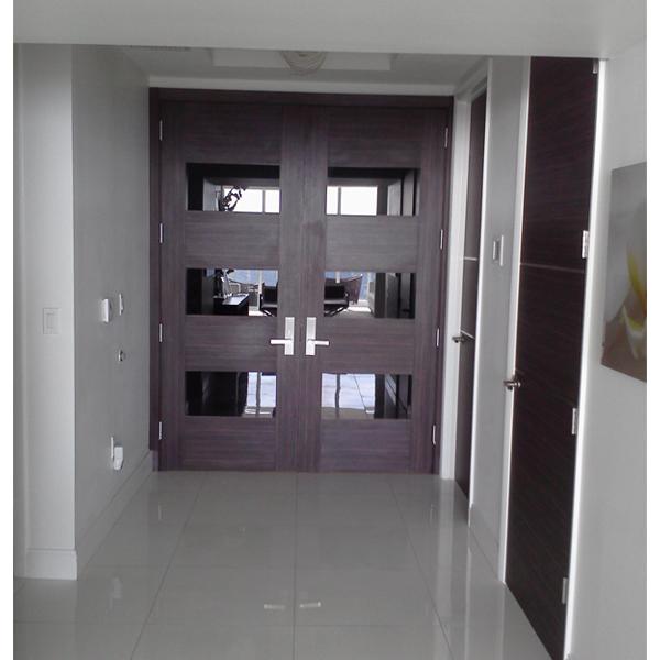 Dayoris Doors Modern Designer Entry Door Aventura